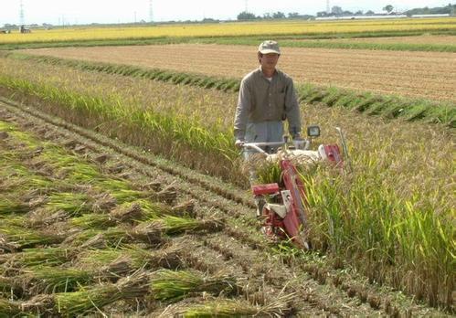 贵州省农委省财政厅关于进一步加强农机购置补贴工作的通知