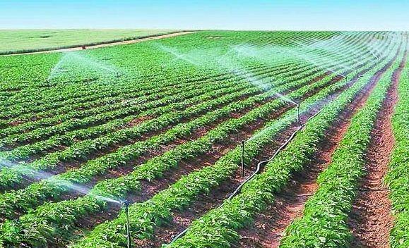 2017年我国新增高效节水灌溉面积2165万亩