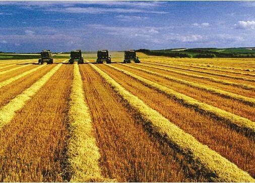 深入推进新时代农垦改革