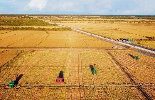 土地托管等农业社会化服务面积逾1.4亿亩