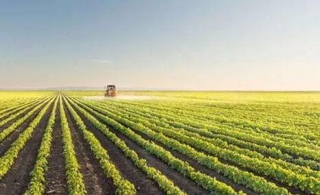 让小农户搭上现代农业快车