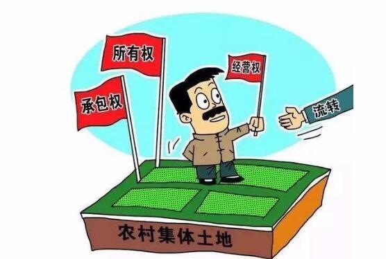 """宅基地""""三权分置"""": 要以赋予农民更多财产权利为核心"""