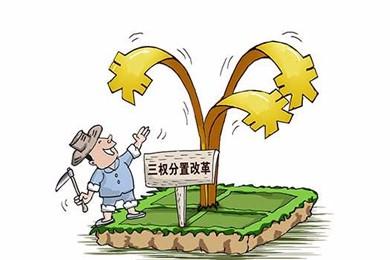 甘肃印发《关于完善农村土地所有权承包权经营权分置办法的实施意见》的通知