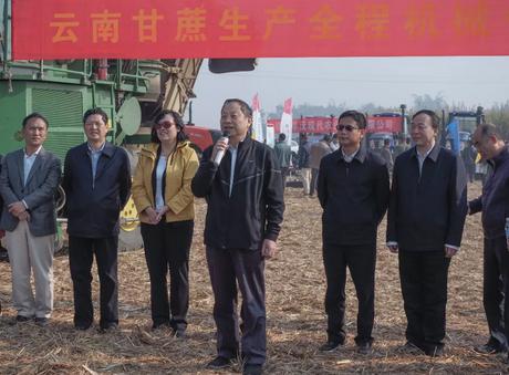 我国甘蔗生产机械化迎来加速时代 产业化提上日程有待关注扶持
