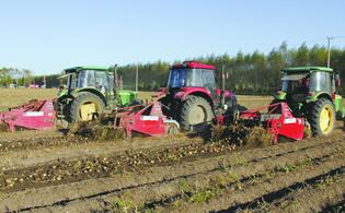 各有各的高招:看这些农机合作社怎样赚钱?