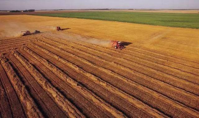 务实创新推进耕地轮作休耕制度试点