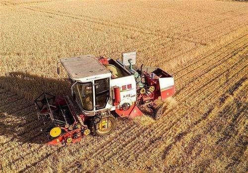 农业现代化离不开亿万小农户