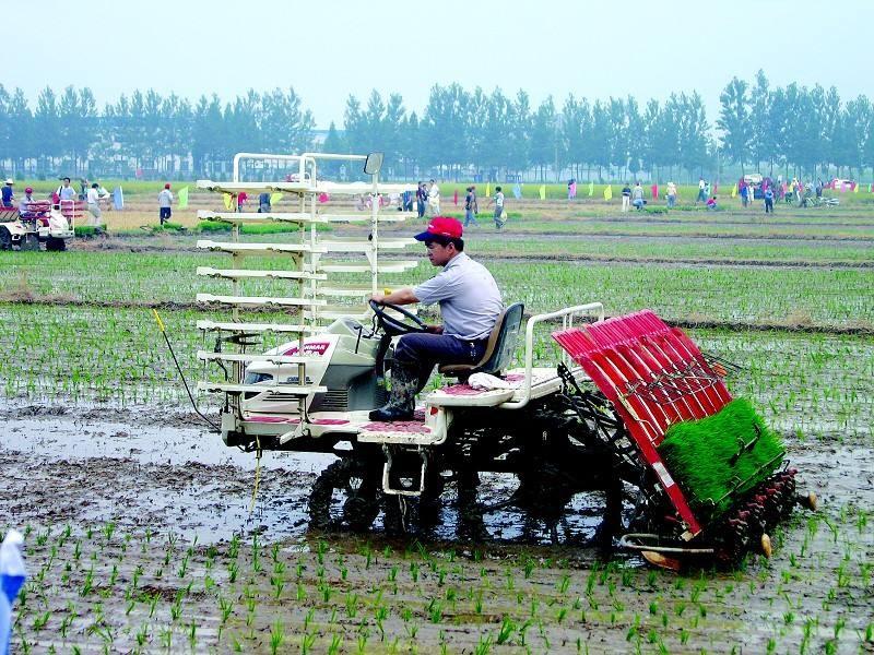 广东省关于协助提供部分农机产品销售信息的通知
