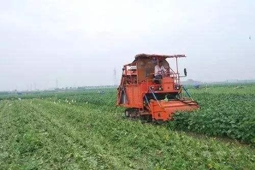 宁波市关于启用2018年农机购置补贴辅助管理系统的公告