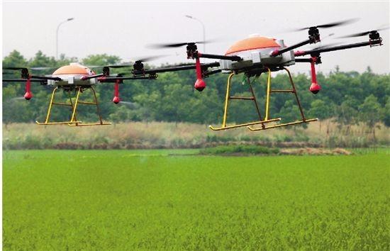 病虫害光谱识别喷药系统: 搭乘无人机巡诊防控病虫害