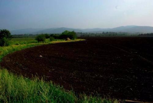 农业农村部:加力推进东北黑土地保护利用和调查监测