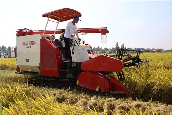高端驾乘,性能典范!今年大田块稻收作业就选雷沃谷神RG60