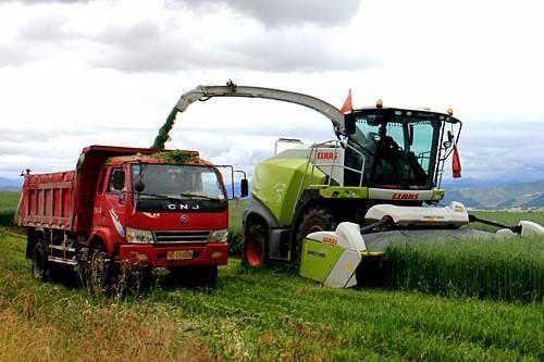 全国牧草生产全程机械化推进活动在青海省举办