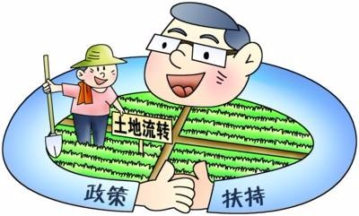 加大对土地流转种植大户的政策优惠、保险等补助力度