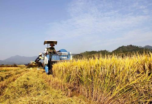 农业农村部关于进一步完善农村土地流转政策,促进农业经济发展建议的答复