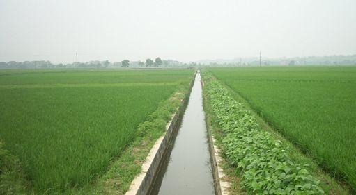 江西推进高标准农田建设