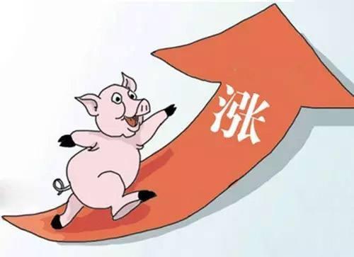 国家统计局:猪肉和蔬菜价格推升8月全国居民消费价格涨幅