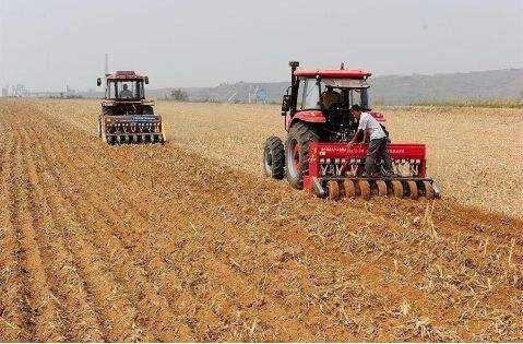 山东发布2018年小麦秋种技术意见 宽幅精量播种