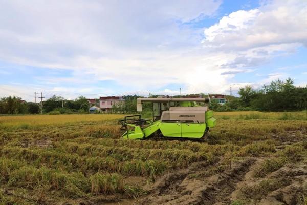"""中联重科:水稻机使用""""八要领"""",助您秋收满载而归!"""