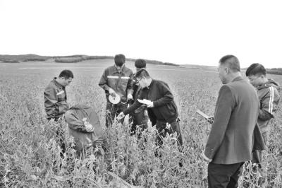 钝化重金属、减肥减药、提升农作物产量和品质,和推动农业绿色