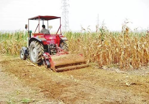 到2025年,吉林省力争秸秆覆盖还田玉米地达45%左右