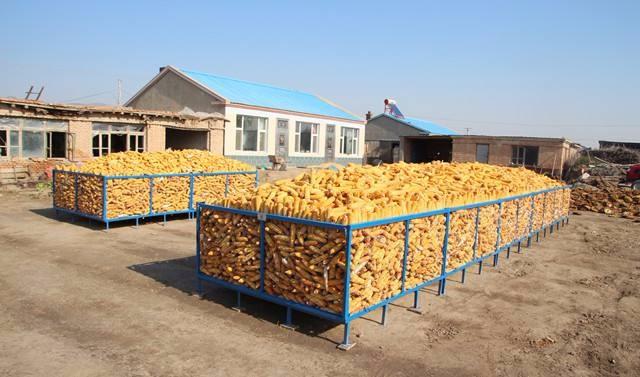 确保种粮农户储粮安全