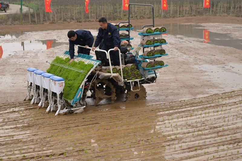 湖南省2018年第四批农机购置补贴产品归档结果的通知