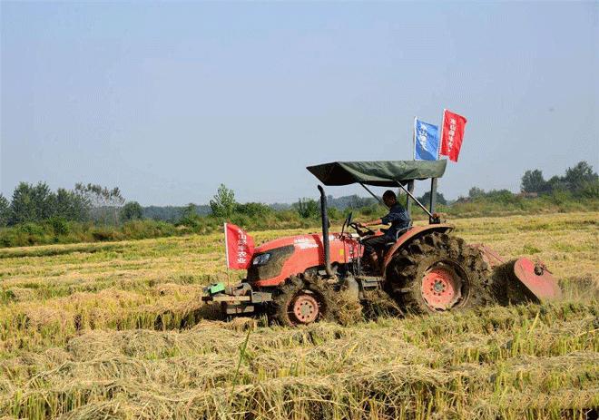 深耕三农肥沃土 绿丰农机显作为