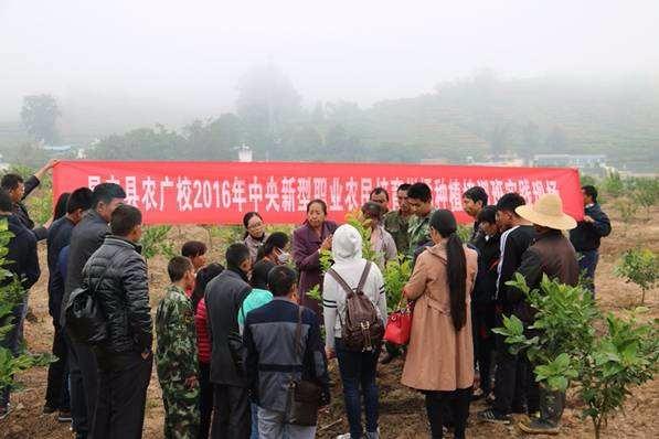 全国新型职业农民培育示范基地(第二批)名单公示公告