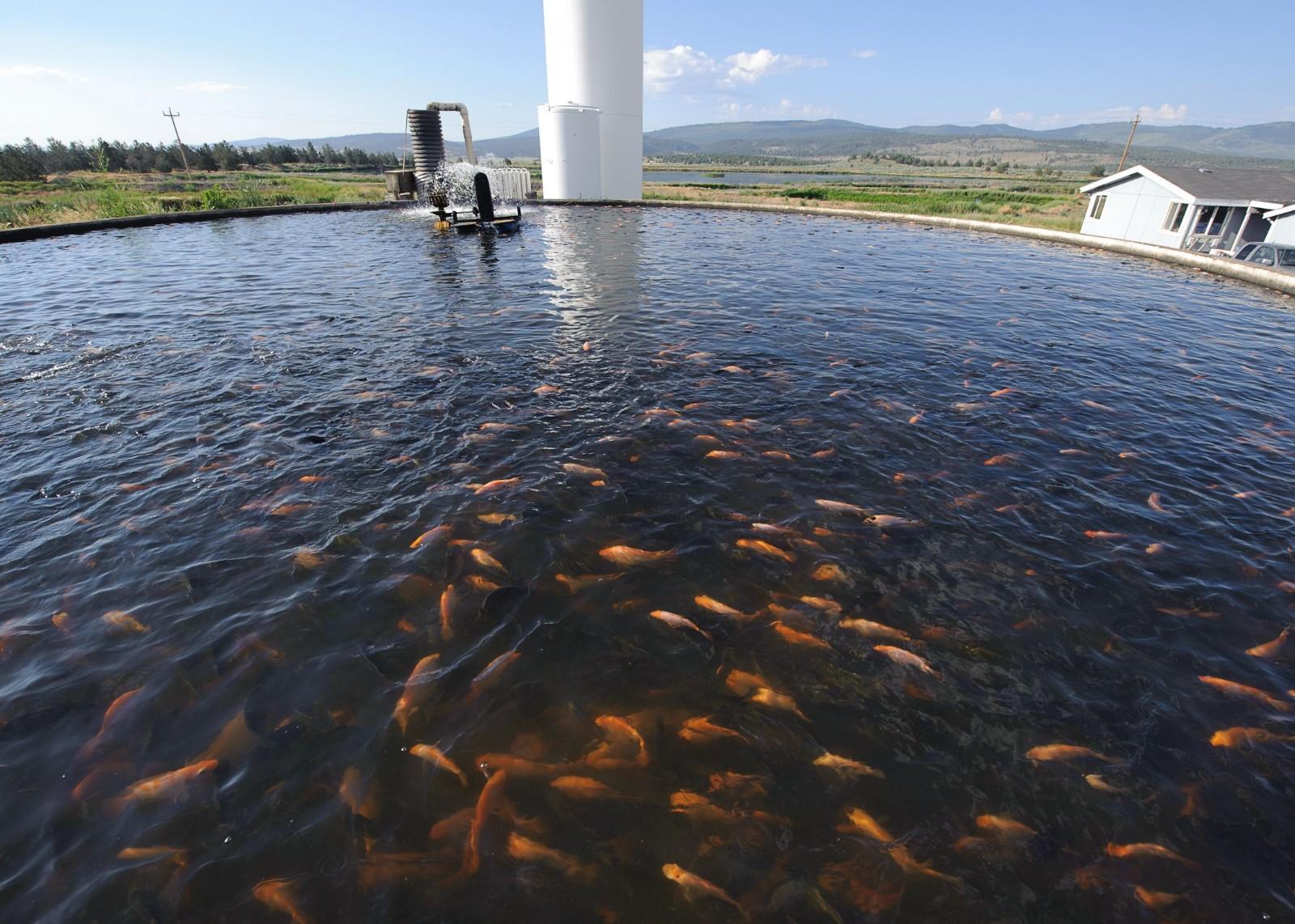 北方水产养殖机械化专题会议