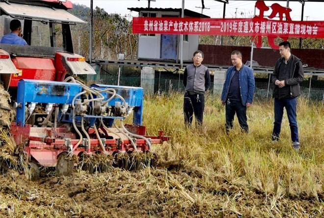 贵州油菜产业技术体系2018—2019年度油菜直播现场会