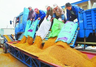 吉林公布2018年稻谷最低收购价执行预案,三等粳稻1.3元/斤
