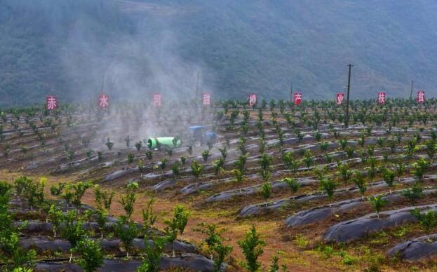 改革创新引领农业绿色安全高质量发展