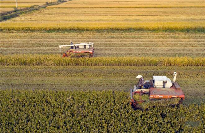 农机鉴定总站上报部级推广鉴定承接任务计划
