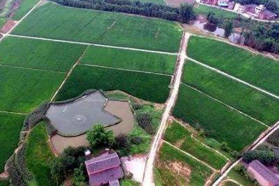 重庆将融资2亿元用于土地宜机化整治