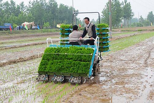 湖北省水稻机械直播技术推广应用情况研究