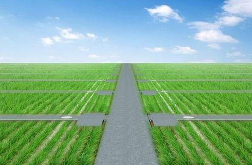 农业农村部部署全国高标准农田建设规划编制工作