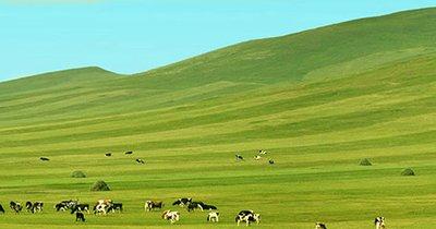 农业农村部办公厅关于进一步做好农牧民补助奖励政策落实工作的通知