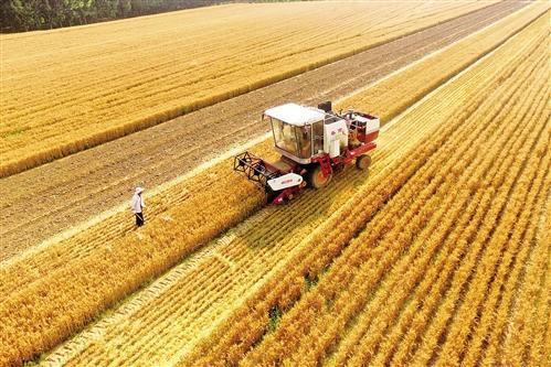 宁波市2019年第二批农机购置补贴产品信息公告