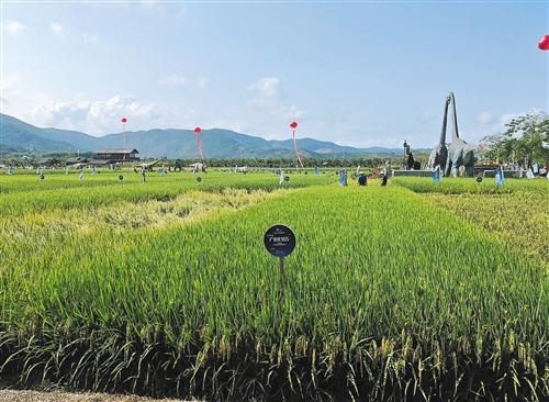山西省关于督促各市分配使用农机购置补贴资金的通知
