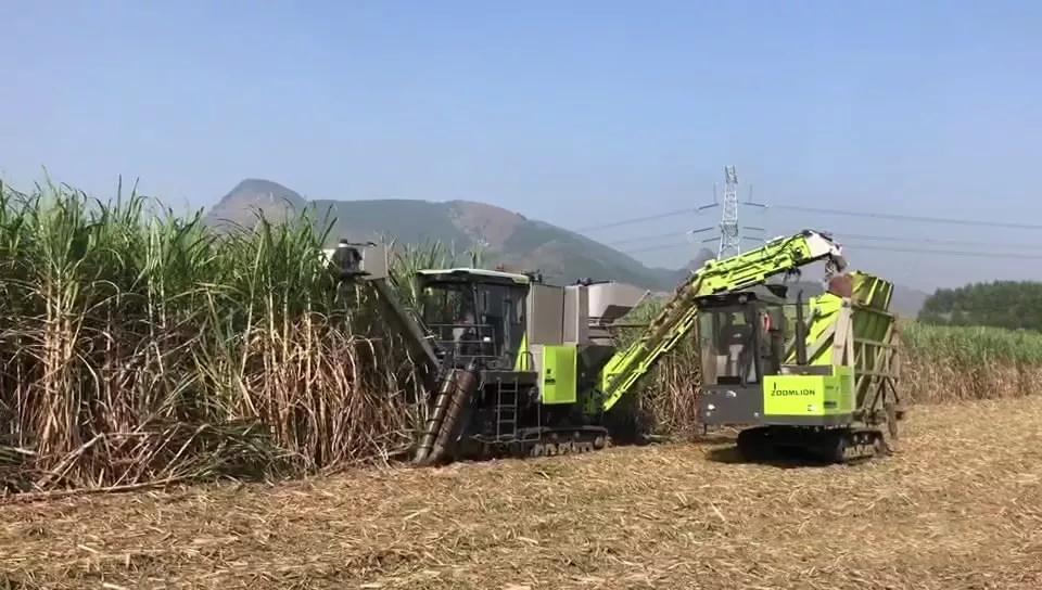 农业农村部:研发推广适宜我国国情的甘蔗收割机械
