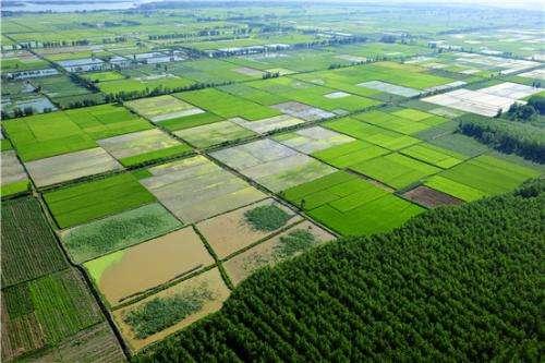 农业农村部通过多种方式防止农民抛荒