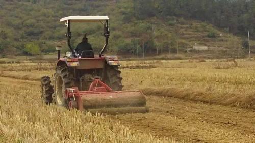 湖北省秋播小麦将稳定在1600万亩以上