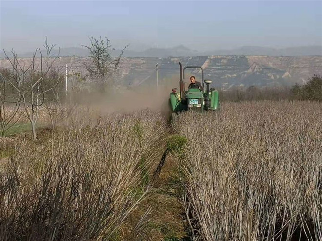 中华人民共和国农业农村部公告 第229号