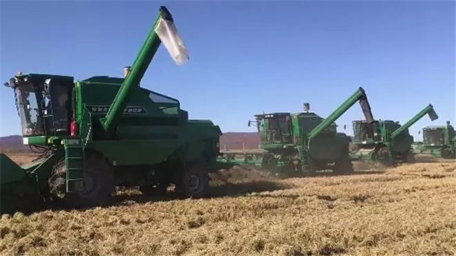 以农业服务规模化提升产业竞争力