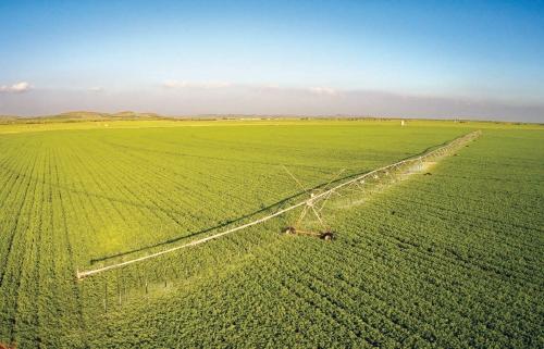 农业科技与祖国共奋进同辉煌