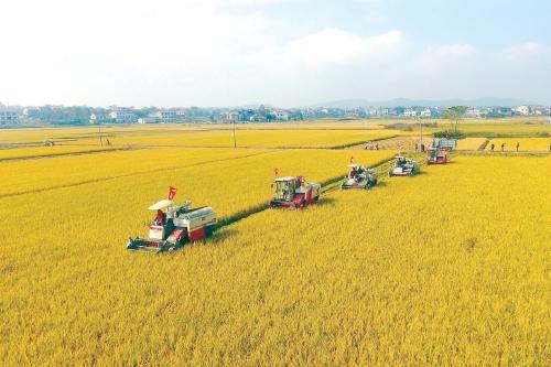 江西省关于2020年第一批省级农机推广鉴定结果的公示