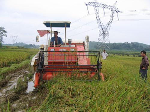宁波市启动2020年农机购置补贴工作