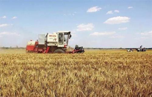 《新型农业经营主体和服务主体高质量发展规划(2020—2022年)》解读五: