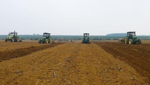 《新型农业经营主体和服务主体高质量发展规划(2020—2022年)》解读一: